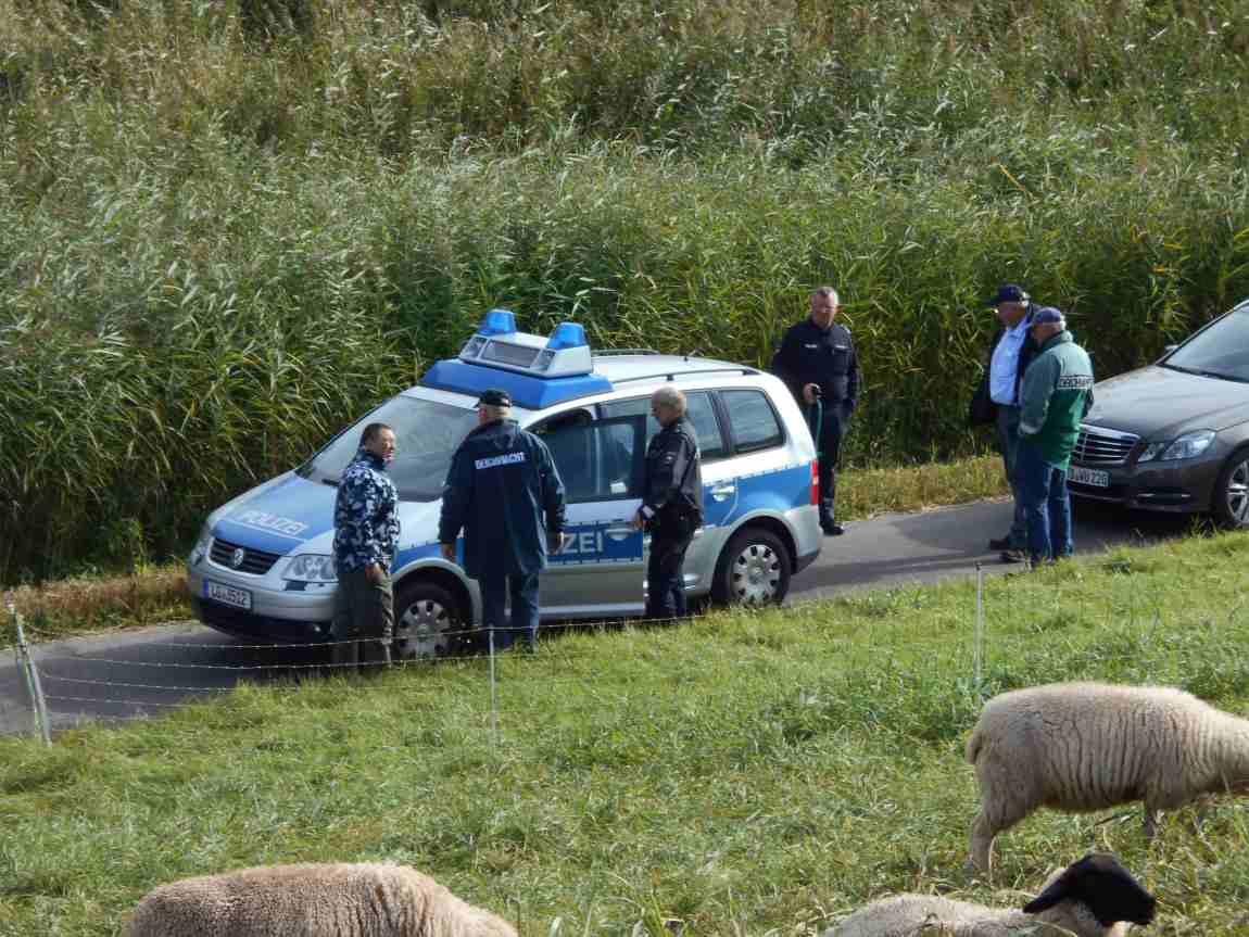 Schafdiebstahl wird angezeigt.